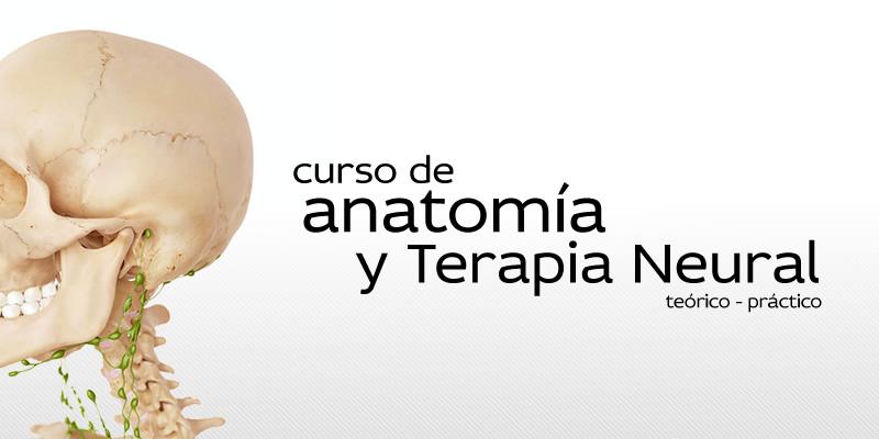 Anatomía y Terapia Neural