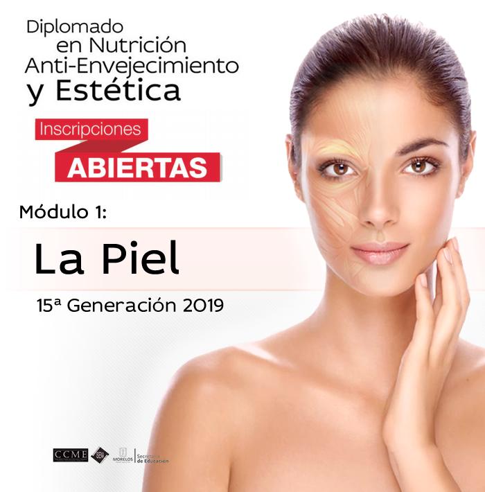 15ª Generación 2019