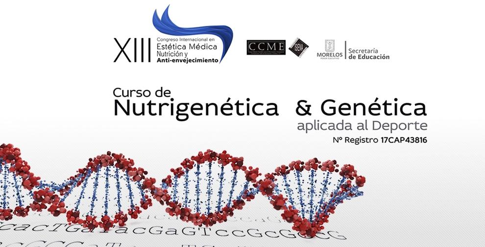 ADN-XIII