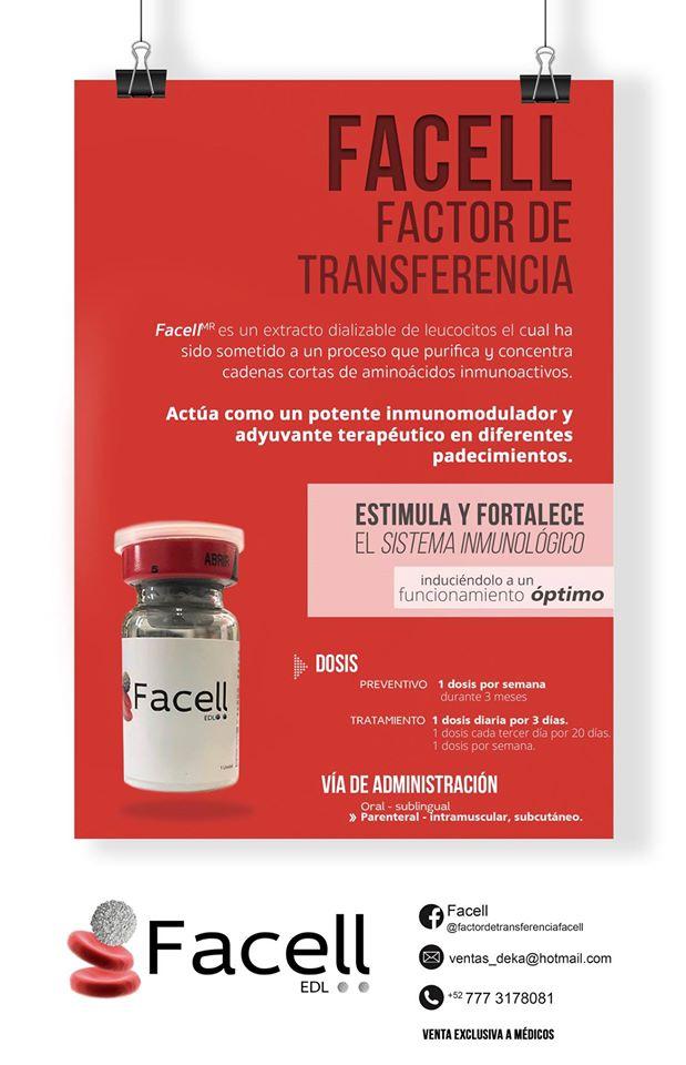 factor-transferencia